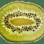 Gudes-Zeich - Kiwi